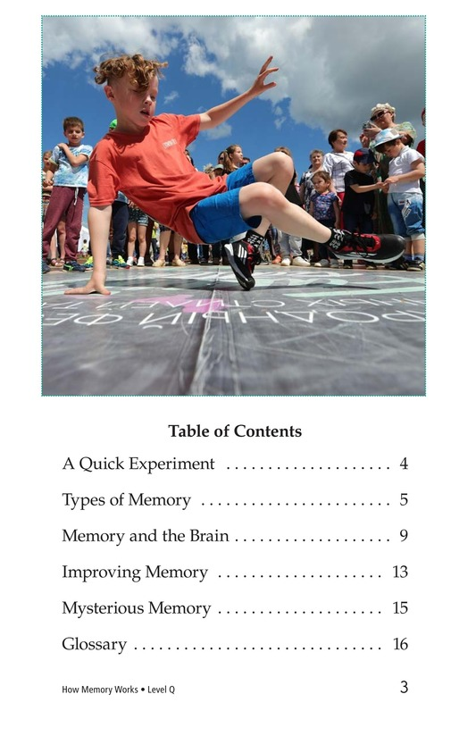 Book Preview For How Memory Works Page 3