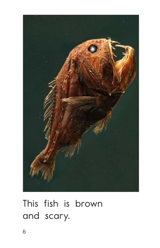 Book Preview For So Many Fish Page 6