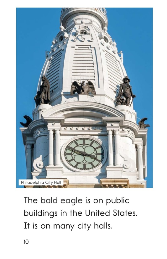 Book Preview For The Bald Eagle Page 10