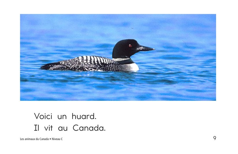 Book Preview For The Animals of Canada Page 9