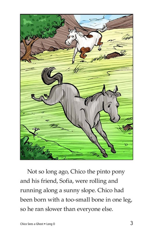 Book Preview For Chico Sees a Ghost Page 3