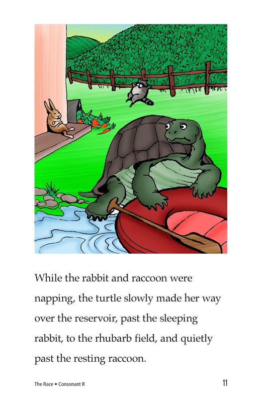 Book Preview For The Race Page 11