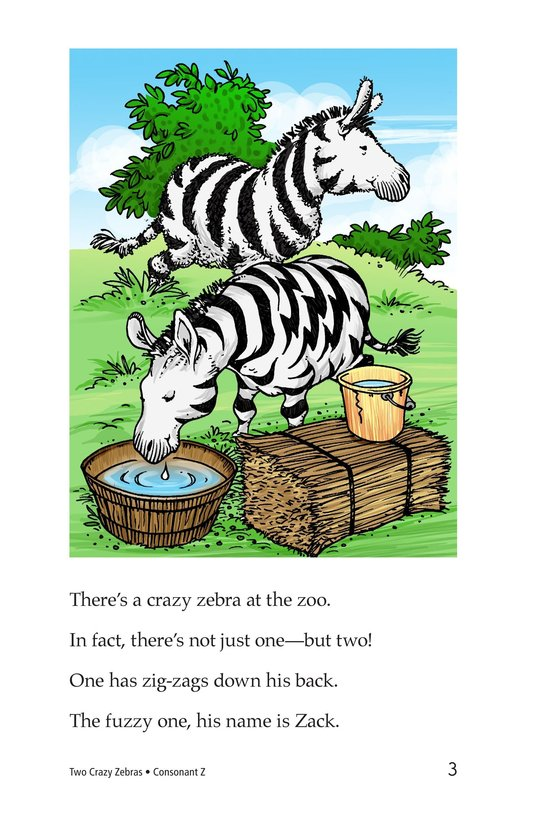 Book Preview For Two Crazy Zebras Page 3