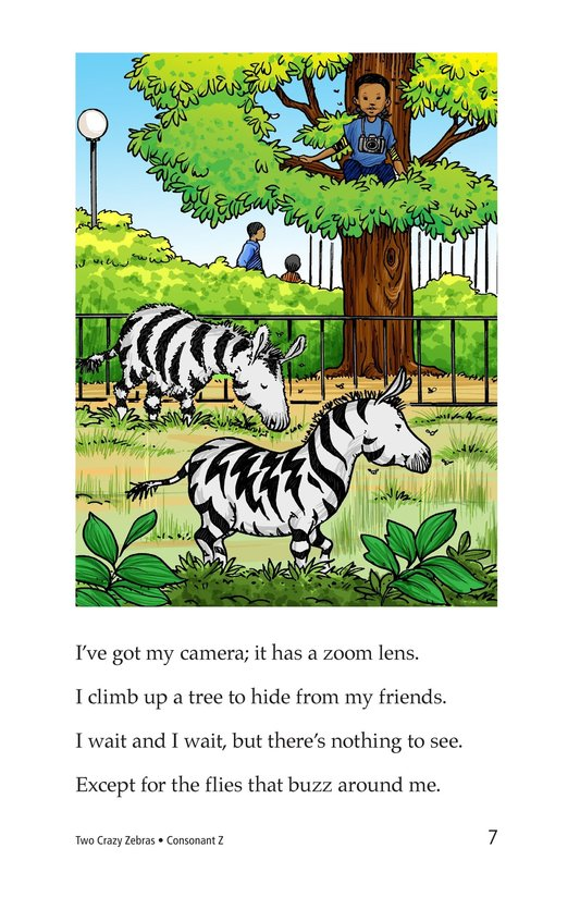 Book Preview For Two Crazy Zebras Page 7