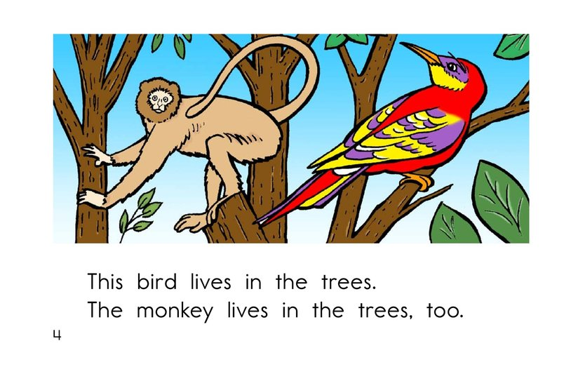 Book Preview For Where Animals Live Page 4