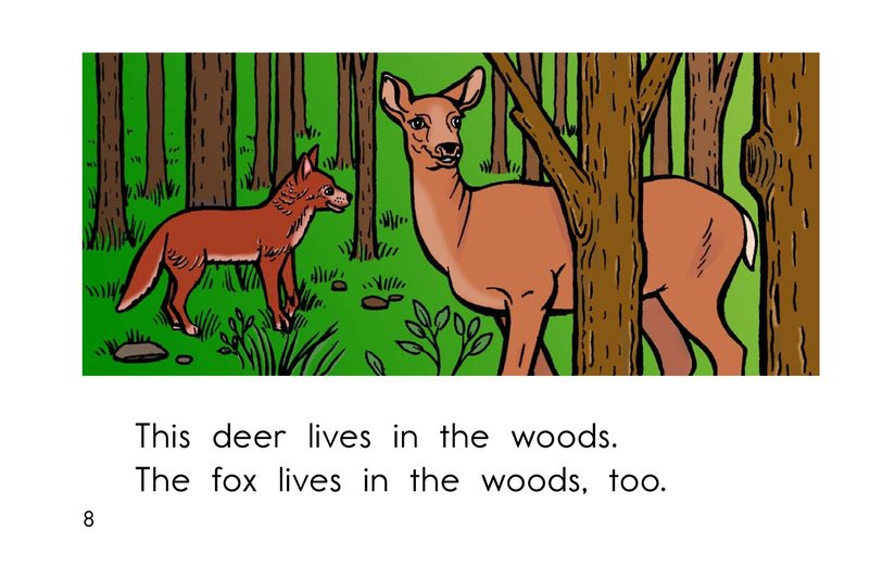 Book Preview For Where Animals Live Page 8