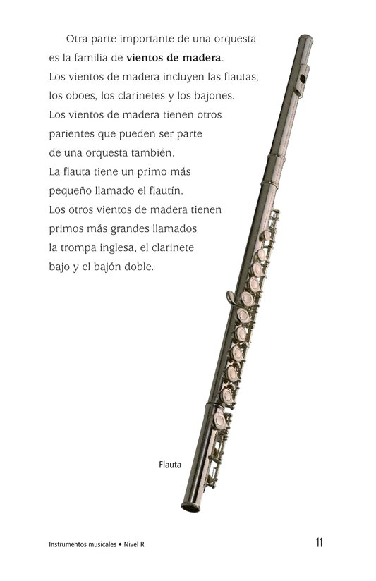 Book Preview For Musical Instruments Page 11
