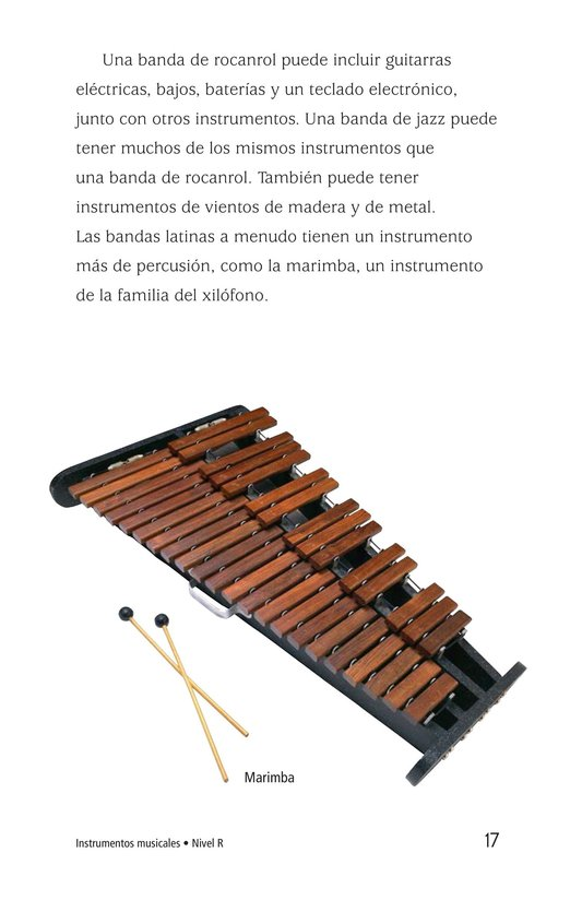 Book Preview For Musical Instruments Page 17
