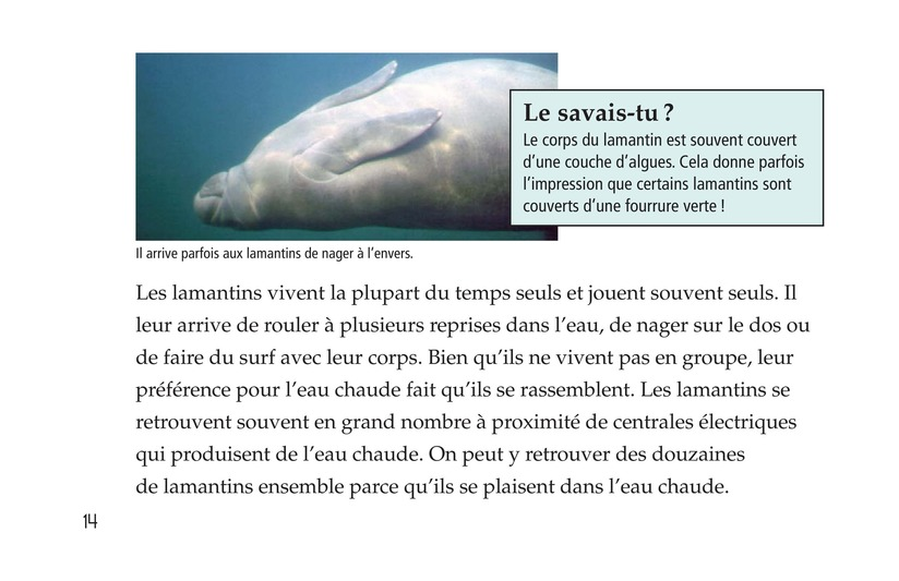 Book Preview For Manatees Page 14