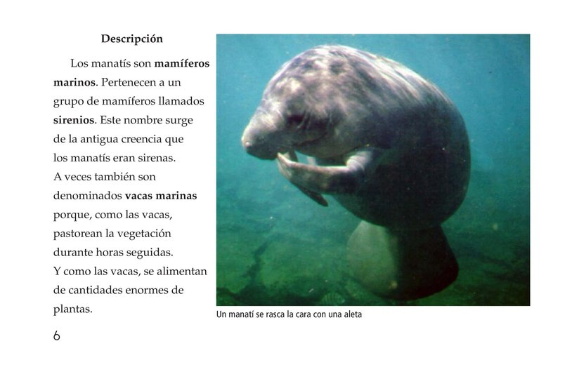Book Preview For Manatees Page 6