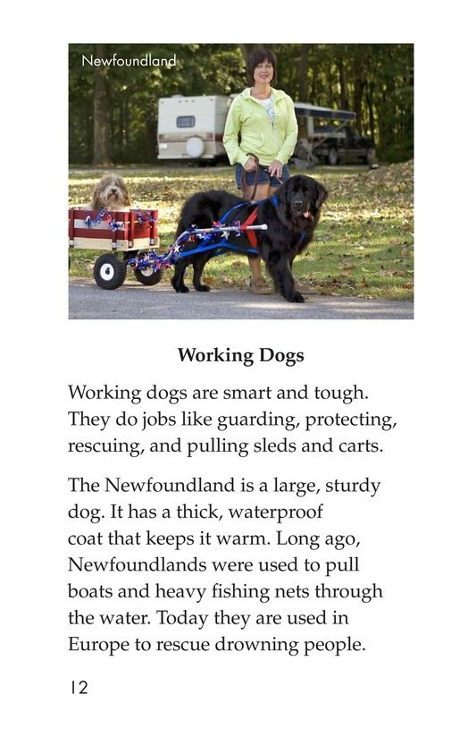 Book Preview For Breeds of Dogs Page 12