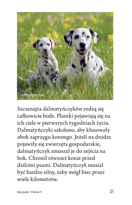 Book Preview For Breeds of Dogs Page 21