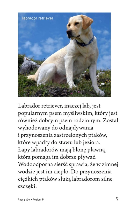 Book Preview For Breeds of Dogs Page 9