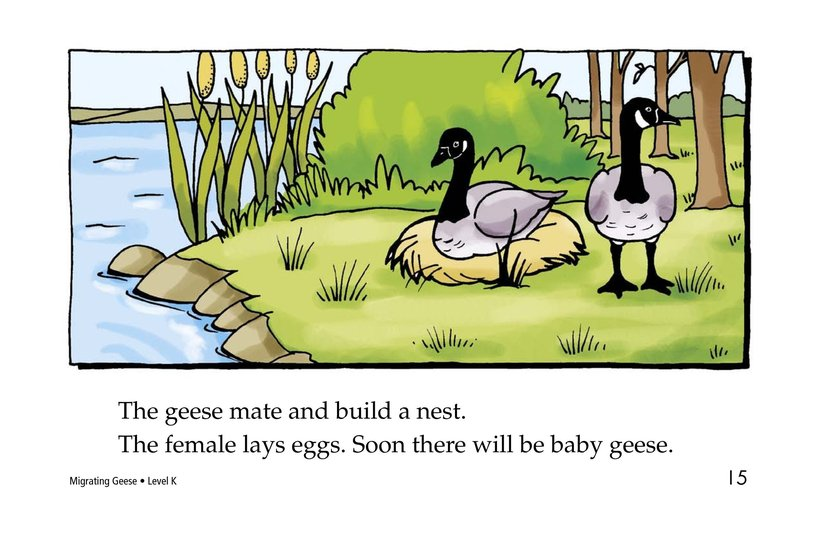 Book Preview For Migrating Geese Page 15