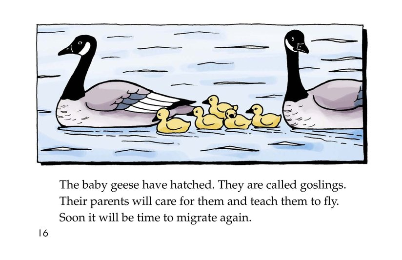 Book Preview For Migrating Geese Page 16