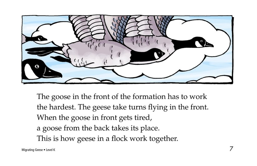 Book Preview For Migrating Geese Page 7