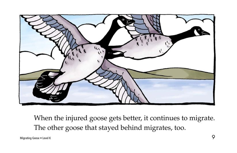 Book Preview For Migrating Geese Page 9