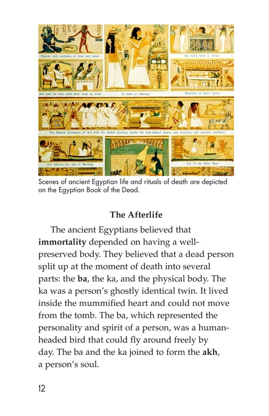 Book Preview For Mummies Page 12