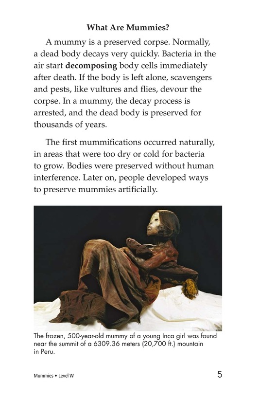 Book Preview For Mummies Page 5