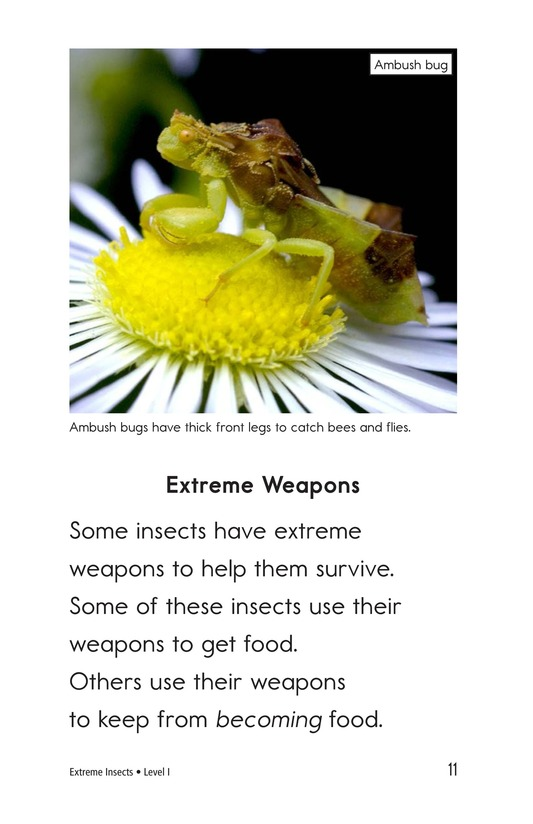 Book Preview For Extreme Insects Page 11