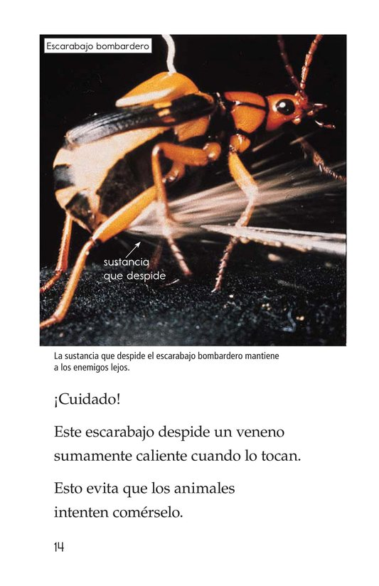 Book Preview For Extreme Insects Page 14