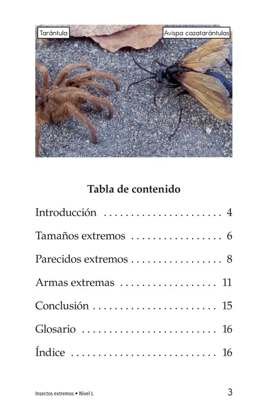 Book Preview For Extreme Insects Page 3