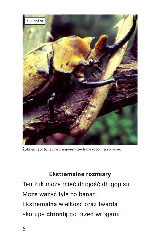 Book Preview For Extreme Insects Page 6