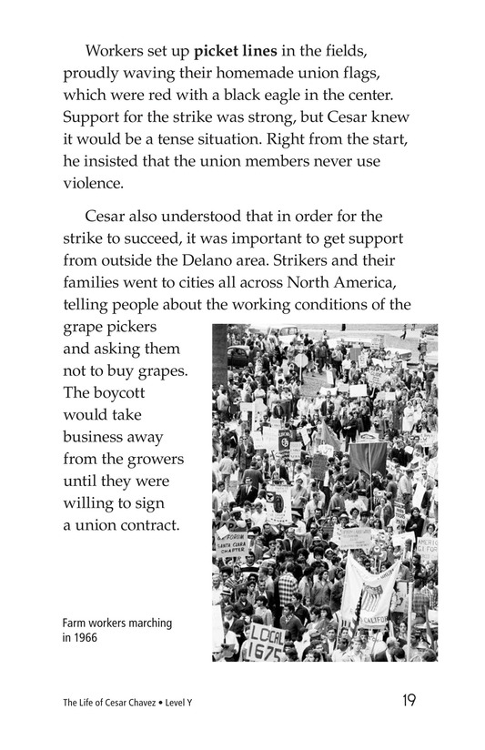 Book Preview For The Life of Cesar Chavez Page 19