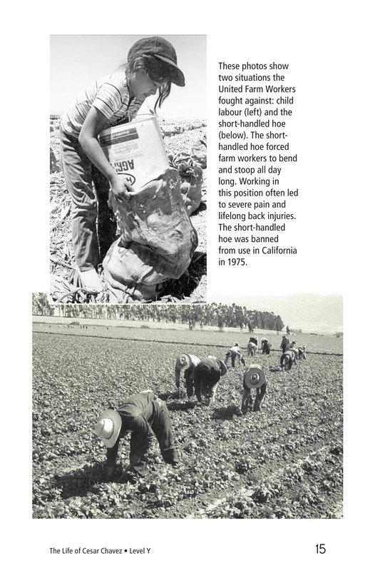 Book Preview For The Life of Cesar Chavez Page 15