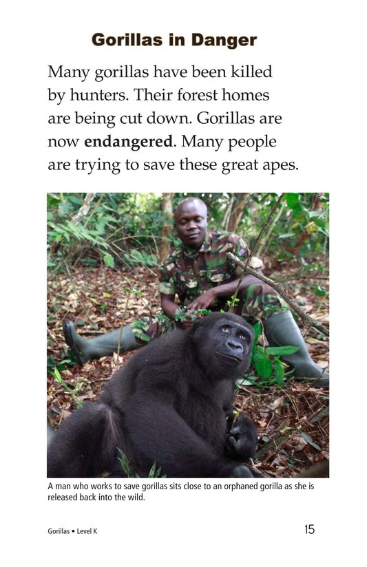 Book Preview For Gorillas Page 15