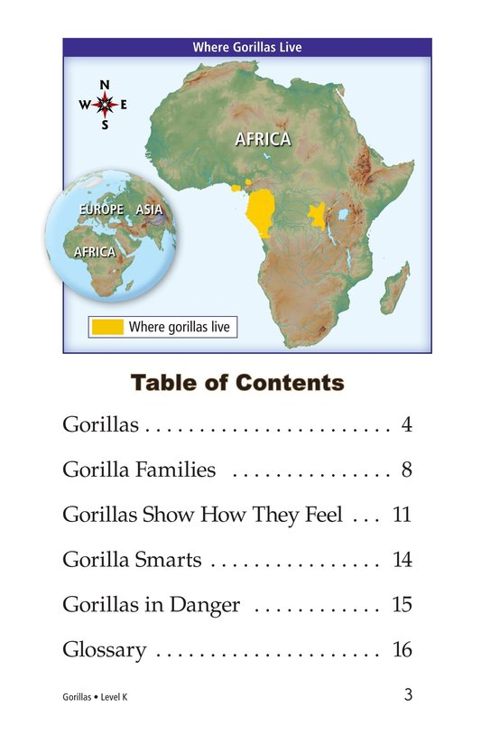 Book Preview For Gorillas Page 3