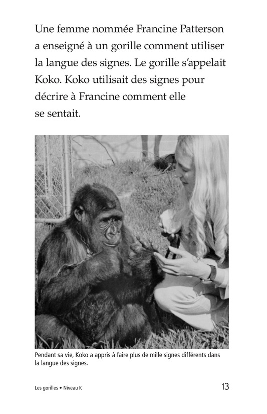 Book Preview For Gorillas Page 13