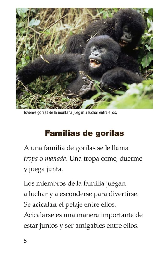 Book Preview For Gorillas Page 8