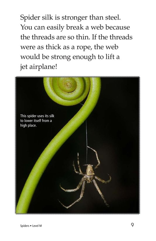 Book Preview For Spiders Page 9