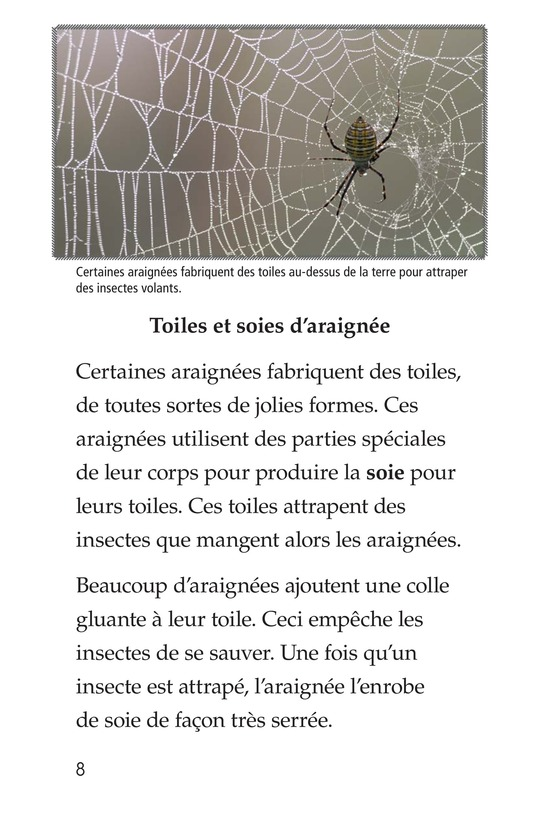 Book Preview For Spiders Page 8