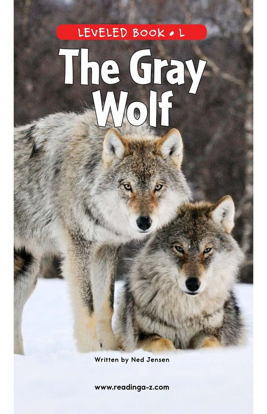 Book Preview For The Gray Wolf Page 0