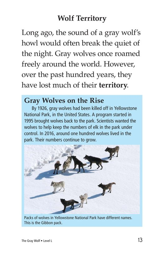 Book Preview For The Gray Wolf Page 13