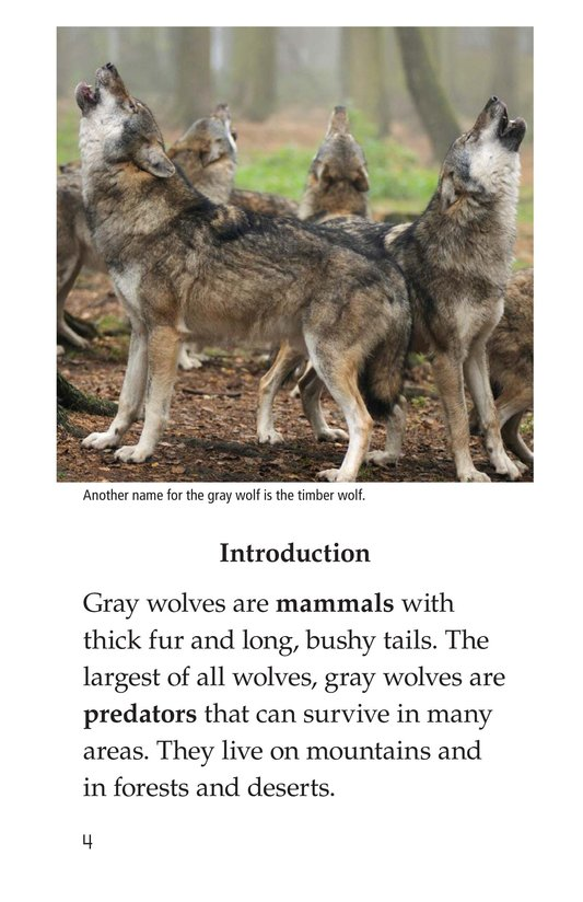 Book Preview For The Gray Wolf Page 4