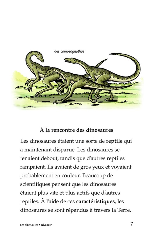 Book Preview For Dinosaurs Page 7