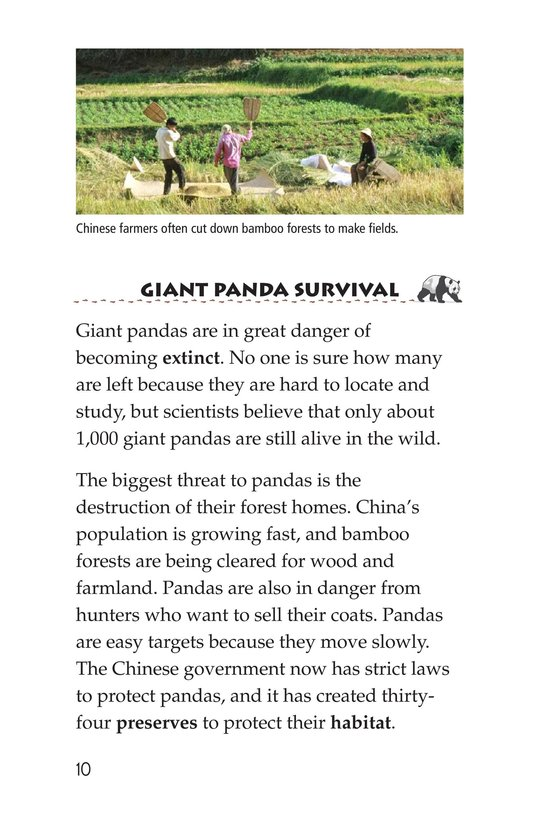 Book Preview For Giant Pandas Page 10