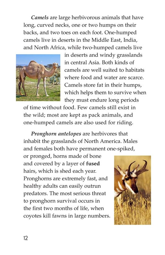 Book Preview For Hoofed Animals Page 12
