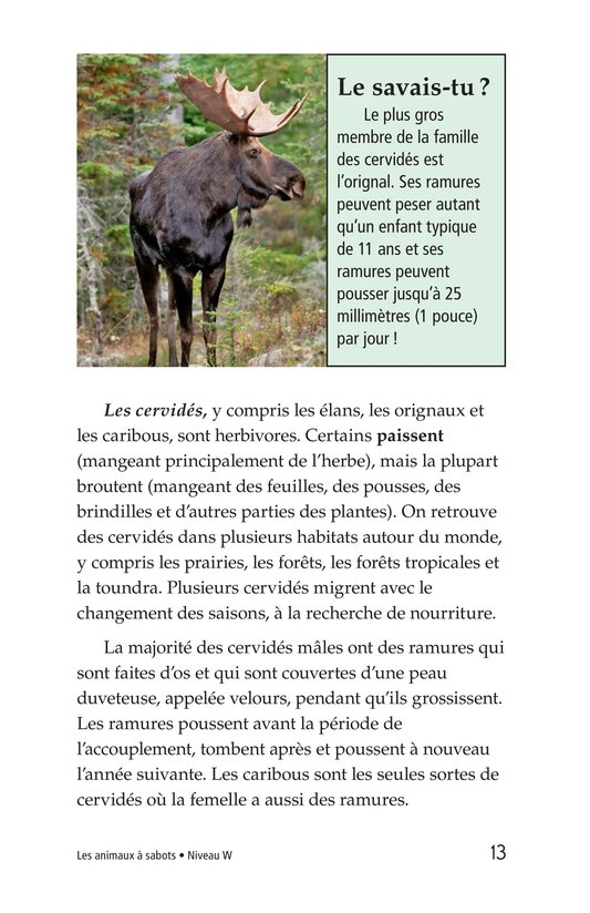 Book Preview For Hoofed Animals Page 13