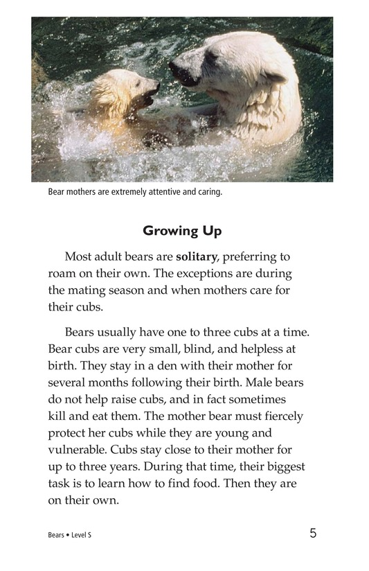 Book Preview For Bears Page 5