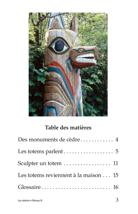 Book Preview For Totem Poles Page 3