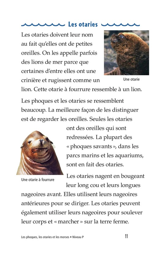 Book Preview For Seals, Sea Lions, and Walruses Page 11