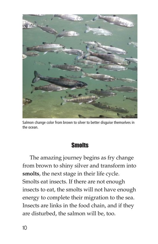 Book Preview For Salmon: A Link in the Food Chain Page 10