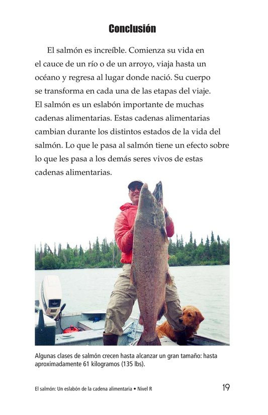 Book Preview For Salmon: A Link in the Food Chain Page 19