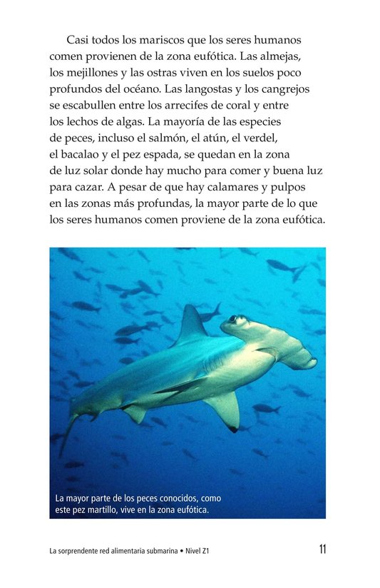 Book Preview For The Amazing Undersea Food Web Page 11
