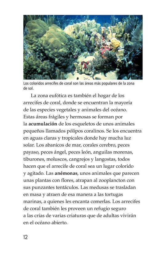 Book Preview For The Amazing Undersea Food Web Page 12