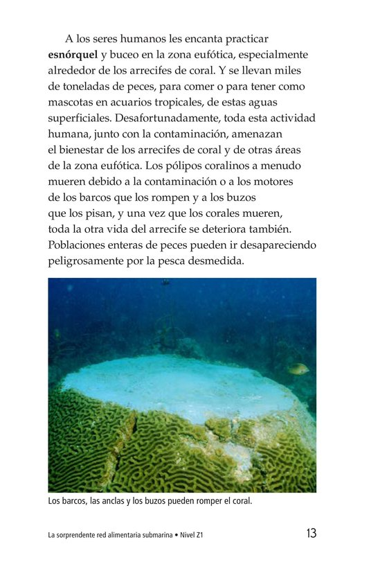 Book Preview For The Amazing Undersea Food Web Page 13